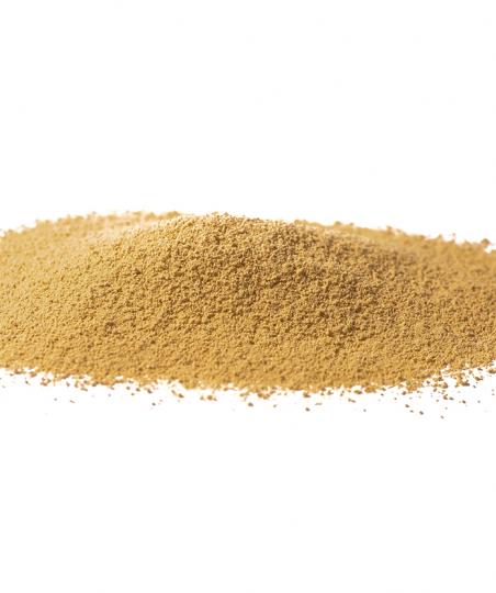 ZENZERO rizoma polvere