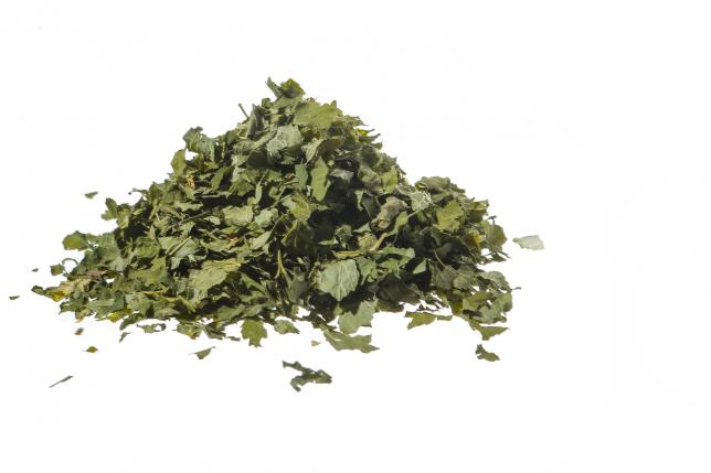 RIBES NERO foglie 500g