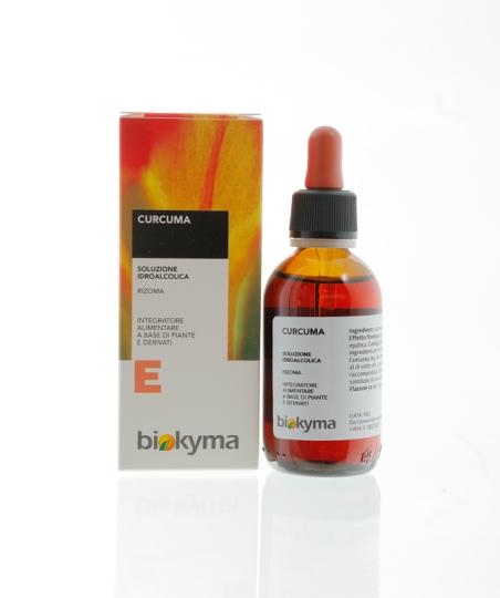 CURCUMA rizoma