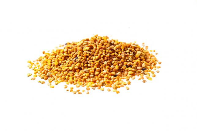 POLLINE granelli spagnolo